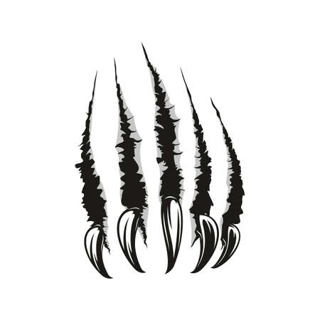 Claws scratches, torn paper trails. Vector wild animal sharp claw slash marks
