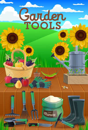 Garden tools and vegetables vector design of agriculture. Gardening and farming shovel, rake and spade, watering can, gloves and boots, fork, knife, seedling box and manure with sunflowers and grass