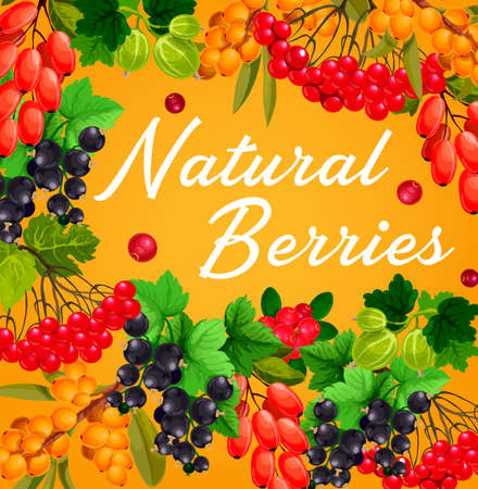 Berries and fruits, vector farm or garden food. Red and black currant branches, gooseberry, cranberry, barberry, sandthorn and viburnum bunches frame border with fresh berries and green leaves 向量圖像