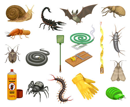 Pest insects, bugs and animals cartoon set of pest control vector design. Insecticide spray, spider, snake and tick, termite, snail, mouse trap and bat, scorpion, snout beetle, moth and silverfish