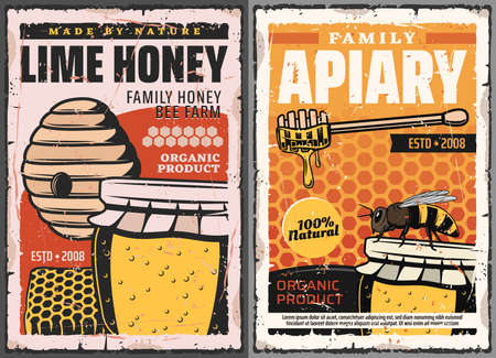 Honey and honeycombs with bee, vector beekeeping farm apiary. Wild bee hive with honey jar and wooden dipper, flower pollen, beeswax and combs retro posters with grunge effects Stock Illustratie