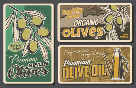 Olive branch and oil bottle retro banners of vector vegetable food. Green fruits of olive tree and vintage jug of extra virgin oil, mediterranean cuisine dishes, Italian antipasto or Spain tapas