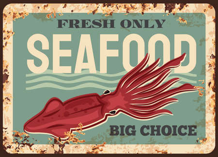 Squid animal rusty plate. Seafood vector vintage rust tin sign, fishing, and fish gourmet restaurant, ocean and sea fishery industry. Squid underwater animal, chef delicatessen food big choice 向量圖像