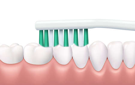 Teeth and gums brushing, 3d vector tooth brush cleaning white healthy teeth. Realistic stomatological procedure, oral health. Tooth protection, caries prevention dental clinic service, hygiene routine