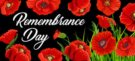 Remembrance Day poster with poppies for British national memorial anniversary of war soldier. 11 November Anzac Day design with red poppy flowers, symbol of freedom, remembrance commemorate 矢量图像