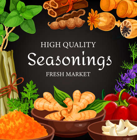 Seasonings, herbs, cooking spices condiments, vector farm food vegetables. Farm herbs and seasonings garlic and rosemary, culinary vanilla, cinnamon and anise, celery herb, turmeric and pepper spice 向量圖像
