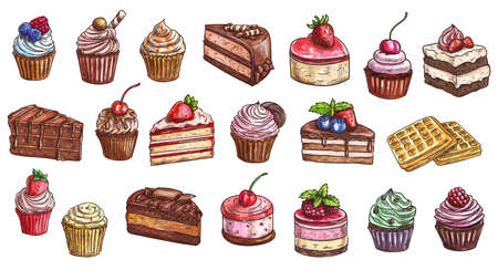 Cakes, cheesecakes and dessert sweets cupcakes sketch, vector icons. Bakery and pastry shop sweet chocolate cakes, hand drawn patisserie sweet dessert cheesecake, tiramisu, brownie and waffles