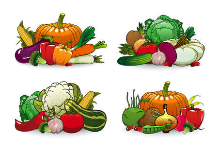 Farm vegetables vector icons squash, bell pepper and cauliflower with beetroot. Illustration