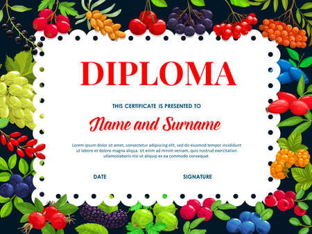 School diploma vector template with garden and wild berries sea buckthorn, black chokeberry and cherry. Blueberry, hawthorn or lingonberry, bird cherry or honeysuckle, cartoon educatio kid certificate