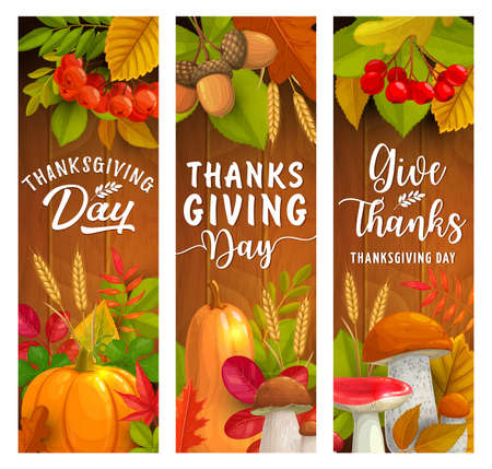 Thanksgiving Day vector banners of autumn harvest holiday. Fallen leaves, pumpkin vegetables and mushrooms, acorn branches, wheat, rowanberry and maple foliage border on wooden background