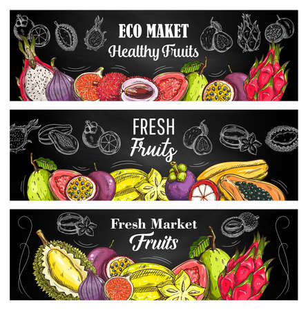 Exotic fruits sketch vector banners with guava, lychee and passion fruit, pitahaya, mangosteen and papaya, figs, durian with carambola. Engraving natural tropical fruits on blackboard, eco market food Ilustração Vetorial