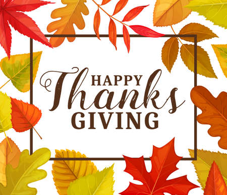Happy Thanks Giving vector greeting card or frame with autumn fallen leaves. Thanksgiving day fall holiday congratulation poster with tree foliage of maple, oak, birch or ash, elm and poplar plants
