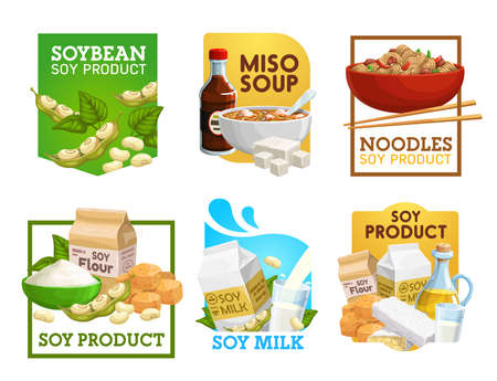 Soy food and soybean products vector icons. Miso soup, noodles and vegetarian flour, milk, tempeh and oil with soya sauce. Vegan nutrition, tofu, soy beans natural organic protein food isolated labels