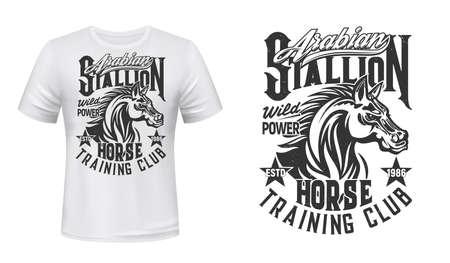 Horse training, equestrian club t-shirt vector print. Arabian stallion head with waving mane engraved retro illustration and grungy typography. Horse riding club apparel custom design print mockup