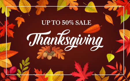 Thanksgiving day vector sale poster with autumn leaves and acorn. Special offer, discount for store, mall or market shopping, promotion coupon with cartoon fallen leaves of oak, birch, chestnut, maple