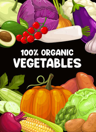 Organic vegetables farm harvest sketch vector. Pattypan squash, cabbage and tomato, avocado, radish and onion, cauliflower, eggplant and garlic, zucchini, beet and corn, pumpkin, artichoke and potato