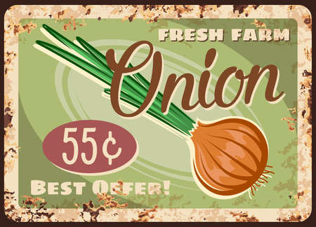 Onion vegetable metal plate rusty, market price retro poster for farm veggies and greenery, vector. Organic natural onion shallot or leek, vegetables shop price sign on metal plate with rust 向量圖像