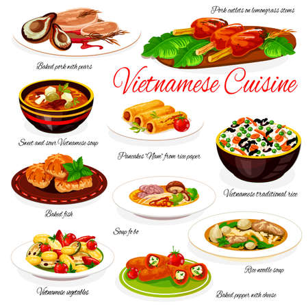 Vietnamese food of vector vegetable and meat dishes with rice noodles and sweet sour soups. Beef pho bo, rice and baked pepper with cheese, pork cutlet with pears, mackerel and sweet pancake rolls Vecteurs