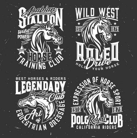 Tshirt prints with horse stallion heads, equestrian dressage, polo sport club vector mascots. Mare animal, horse and typography on black grunge background. Bronco racing sports team t shirt prints set 向量圖像