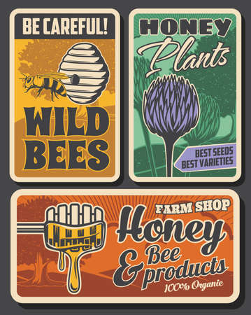 Beekeeping farm and honey production retro posters. Bees hive or nest, clover flowers and tree, wooden dipper with dipping fresh honey vector. Wild bees danger beware warning, plants seeds shop banner