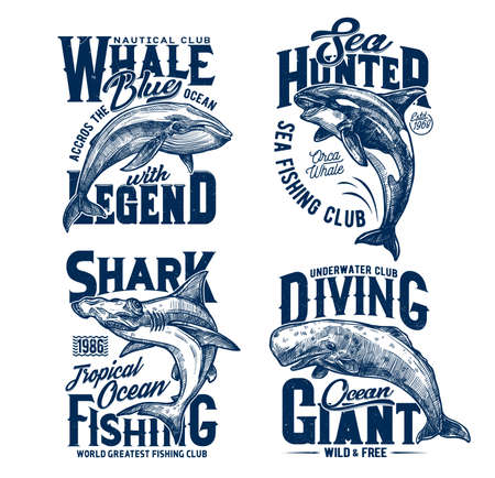 Tshirt prints with hummer head shark, killer and blue whales, vector mascots for fishing, diving or marine club. Sea predator animals, ocean adventure team prints with typography on white background