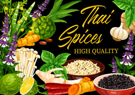 Thai spices and herbs vector design of Asian cuisine food seasonings and condiments. Kaffir lime, ginger, lemongrass and chili, sesame seeds, galangal, basil and mint, bamboo shoots and coriander