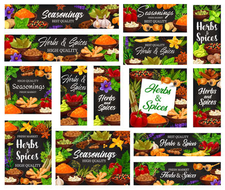 Seasonings, spicy and aromatic herbs banners. Turmeric and ginger, peppercorn, paprika and chilli peppers, onion, garlic and rosemary, peppermint, vanilla vector. Seasonings and spices market poster