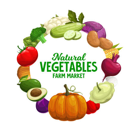 Vegetables banner, farm market food veggies frame, vector harvest. Natural healthy garlic, pepper and tomato, zucchini squash and broccoli, vegetarian avocado and corn with pumpkin, farmer harvest