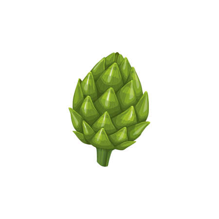 Artichoke fresh vegetable pimpled cone, vector natural healthy food isolated on white background. Cartoon element for design, organic veggies, ripe plant, eco farm production Vector Illustratie