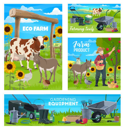 Farm and gardening, agriculture farming equipment, vector harvest products, cattle and poultry. Farmer gathering harvest at farmland field into wicker basket, gardening rakes, spade and seedling spade