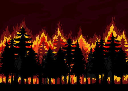 Forest fire background, burning spruce, pine trees vector silhouettes. Natural disaster, ecological catastrophe and environment pollution, climate changes and global warming problem backdrop