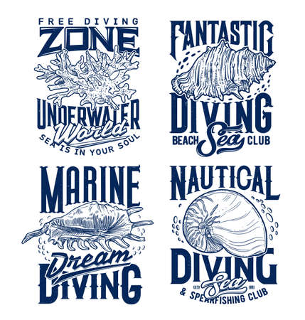Mollusks and sea snails seashells, corals colony t-shirt print template. Marine diving and spearfishing club clothing custom print with spider and queen conch, Nautilus shell and vintage typography