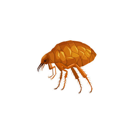 Flea icon, insect parasite pest control service and health disinsection symbol, vector isolated. Flea insect parasite, animals and human pest control sanitary disinfection and extermination symbol