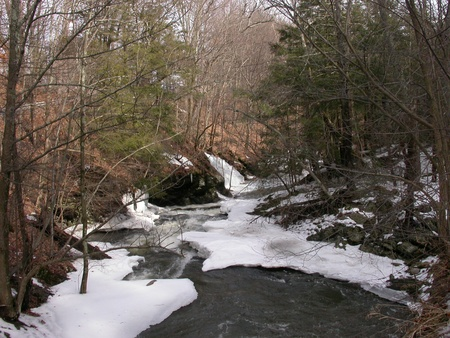 An Icy stream following through a forest in northern New Jersey.