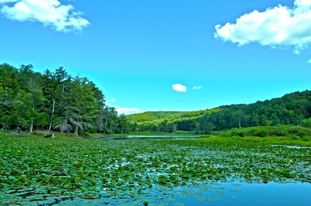 A lake in upstate New York taken in HDR.