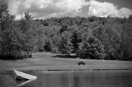 Image of a countryside pond taken in Black and White.