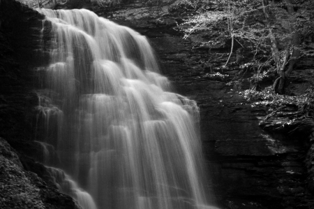 A black and white image of a Waterfall in the forest