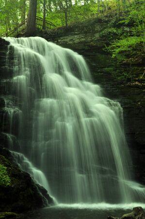 Krajobraz Wodospad w parku