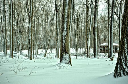 Pejzaż zimowy Zdjęcie Seryjne