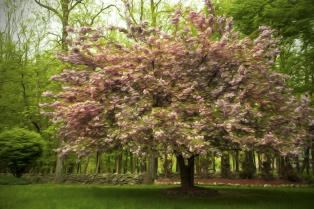 Oil Painting of A Pink Spring Tree Stock Photo