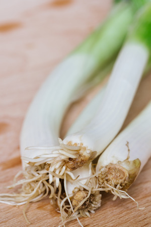 bulb and stem vegetables: green spring onions on wooden background