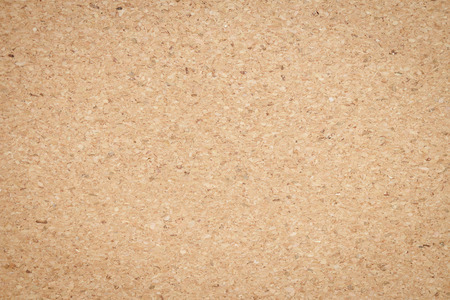 pin board: cork board