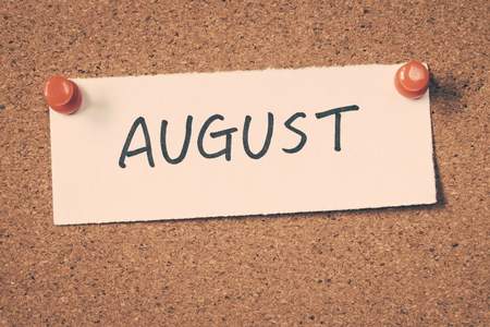 8 月 写真素材