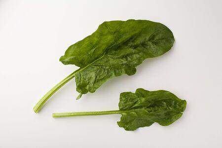 Twee raw spinazie bladeren op wit