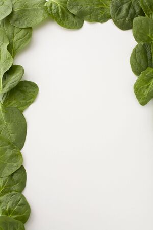 Spinach leaves creating a three quarter border on white