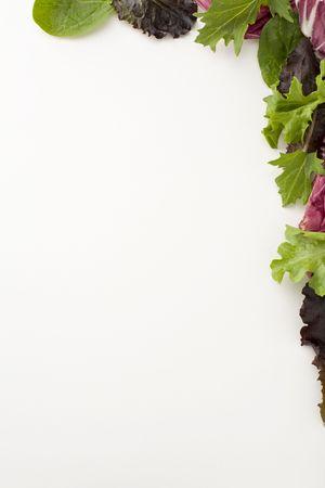 Verse salade laat een decoratieve halve rand maken
