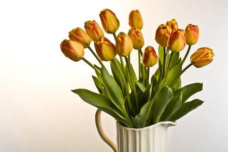 Oranje en rode tulpen in crème kruik op een effen achtergrond