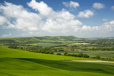 weald: Downland and Weald above the Long Man of Wilmington