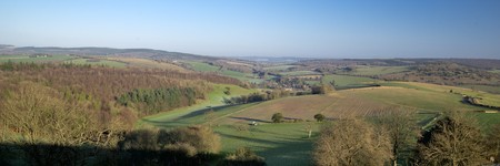 Downland panorama at Singleton