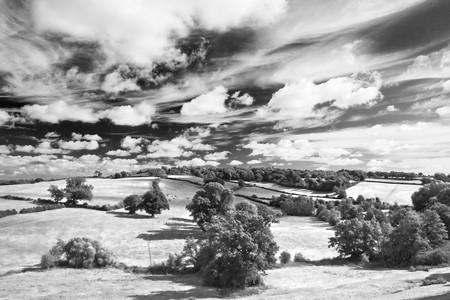 cloudscape: Petworth cloudscape